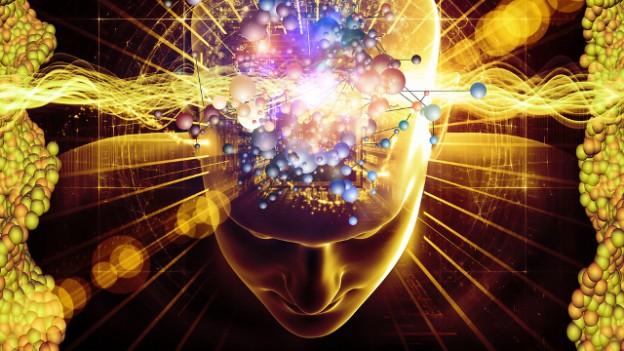 Фото - Как мозг борется с агрессорами?